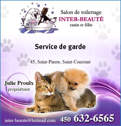 Animaux pension garderies for Salon de toilettage canin