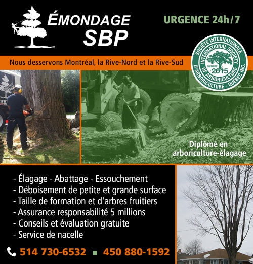 Émondage SBP - Émondage SBP - Services d'arbres, élagage, abattage, essouchement d'arbres, arbustes et arbres fruitiers, déboisement et service de nacelle / Tree & shrub pruning, felling, grubbing, deforestation, formative pruning, fruit trees pruning & bucket lift service (514) 400-0241