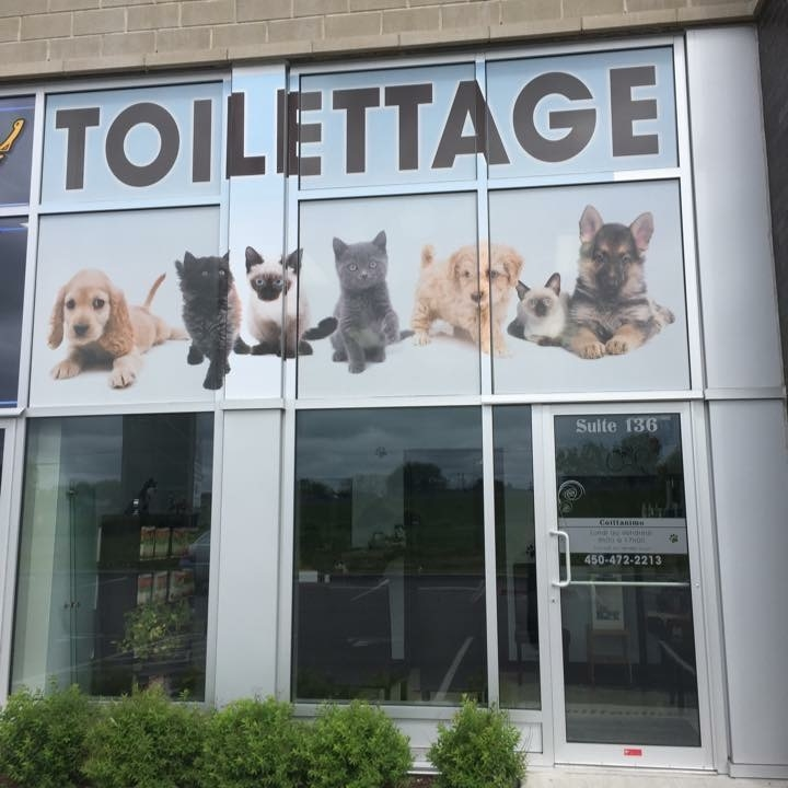 Photo de Coiffanimo inc. - Animaux Tonte & Toilettage