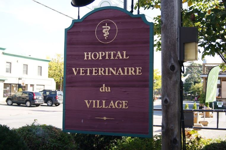 Photo de Hôpital Vétérinaire du Village - Veterinarians